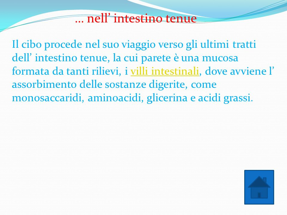 … nell' intestino tenue