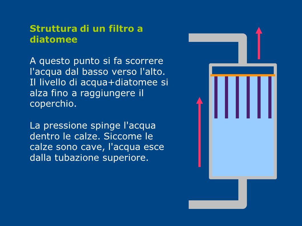 Struttura di un filtro a diatomee