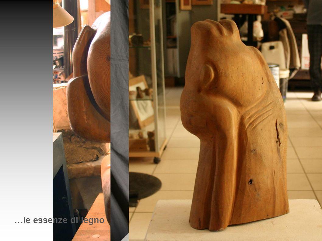 …le essenze di legno