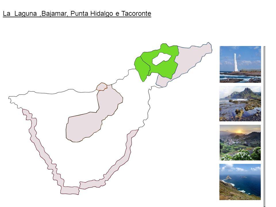 La Laguna ,Bajamar, Punta Hidalgo e Tacoronte
