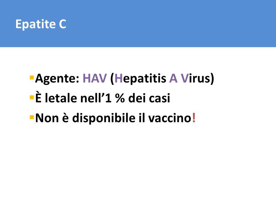 Epatite C Agente: HAV (Hepatitis A Virus) È letale nell'1 % dei casi Non è disponibile il vaccino!