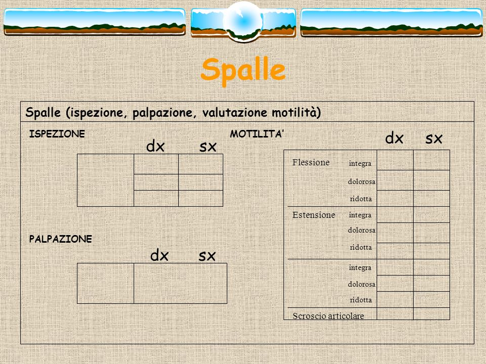 Spalle Spalle (ispezione, palpazione, valutazione motilità) ISPEZIONE. MOTILITA' dx. sx. dx. sx.