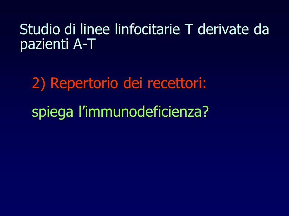 Studio di linee linfocitarie T derivate da pazienti A-T