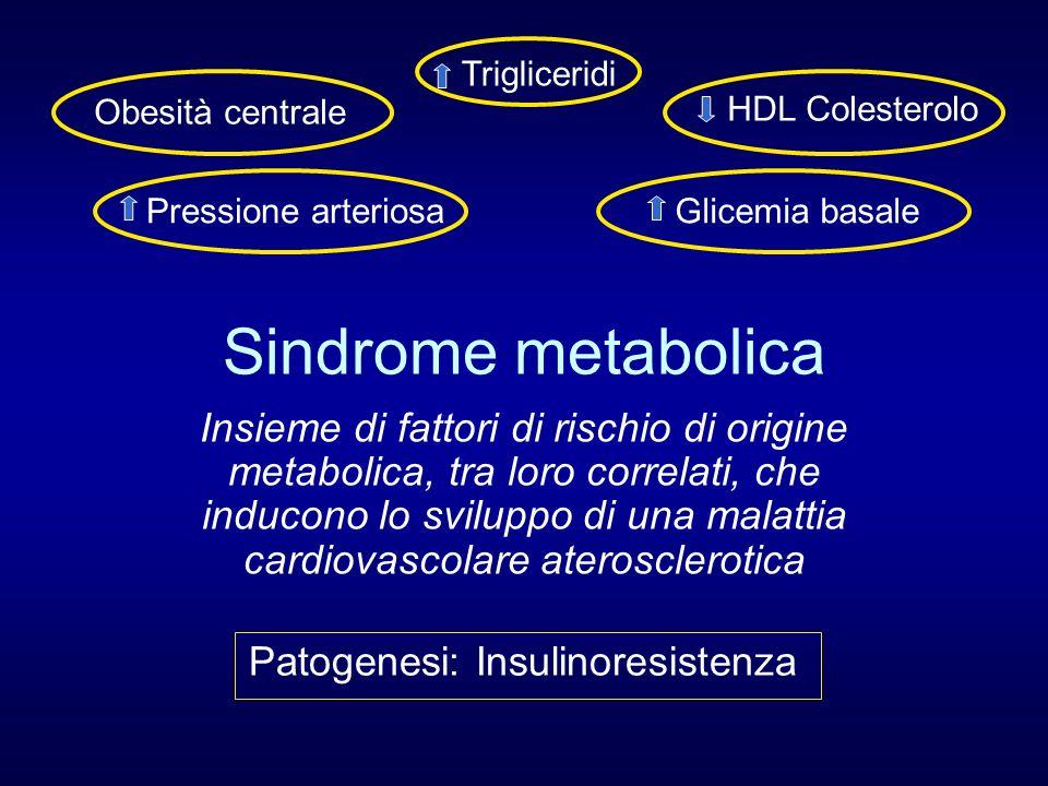 Trigliceridi Obesità centrale. HDL Colesterolo. Pressione arteriosa. Glicemia basale. Sindrome metabolica.