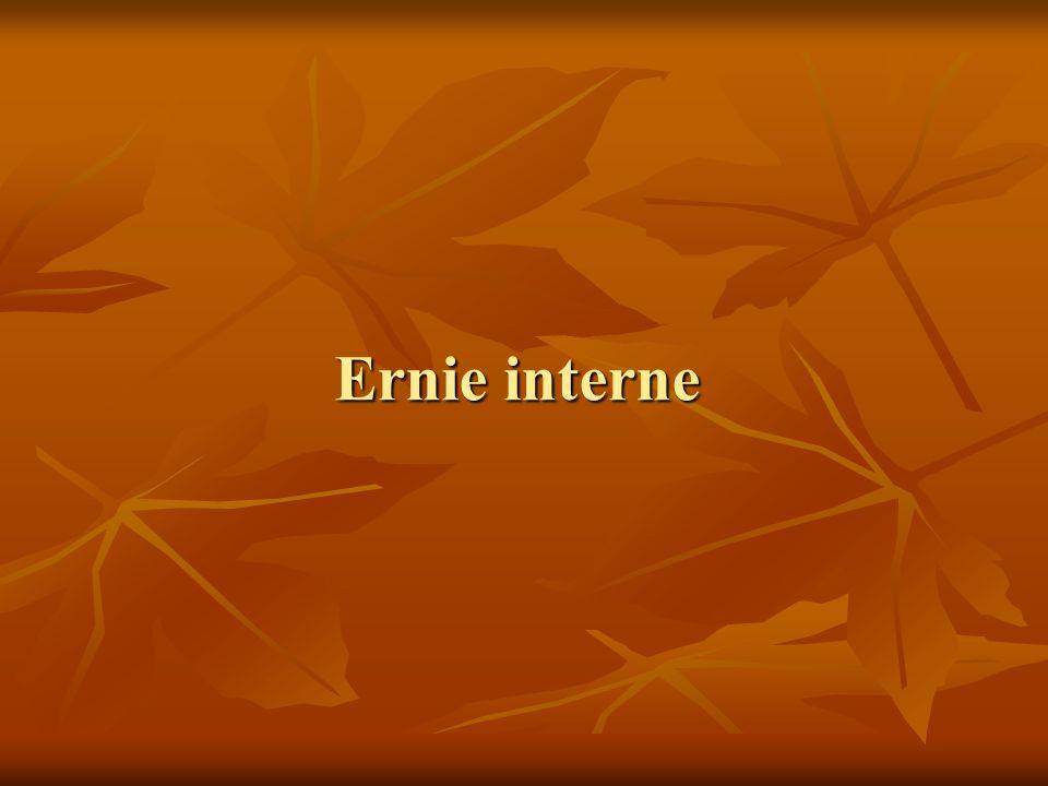 Ernie interne