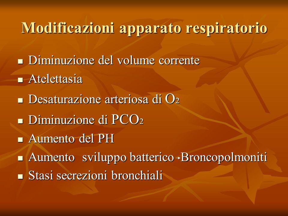 Modificazioni apparato respiratorio