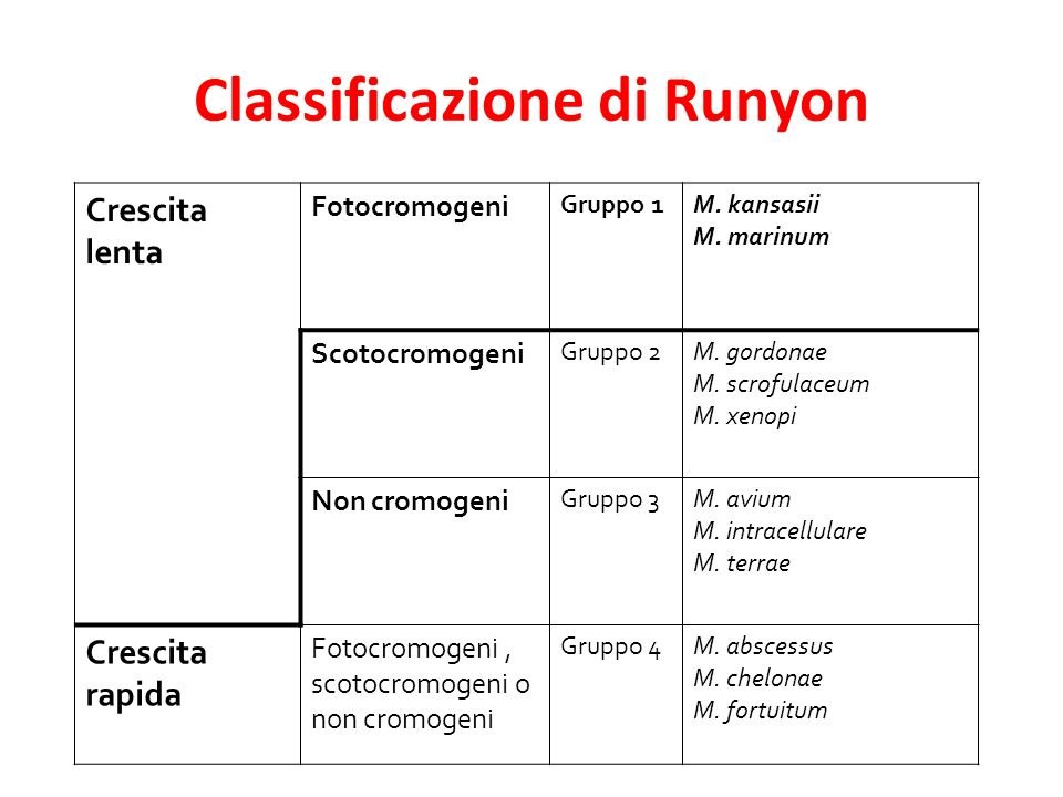 Classificazione di Runyon