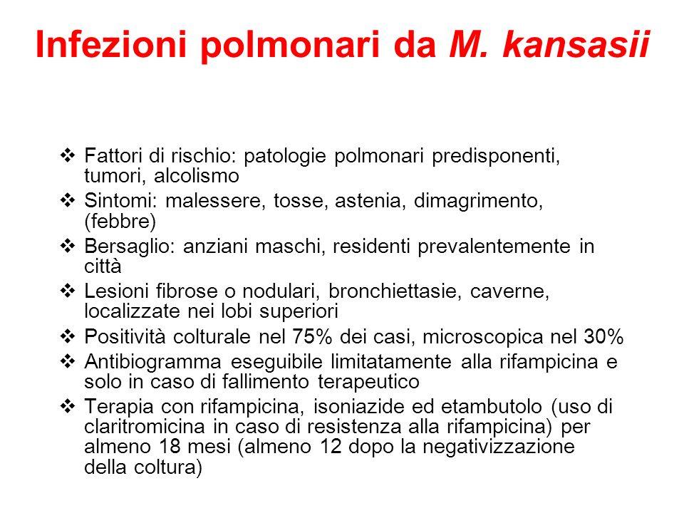 Infezioni polmonari da M. kansasii