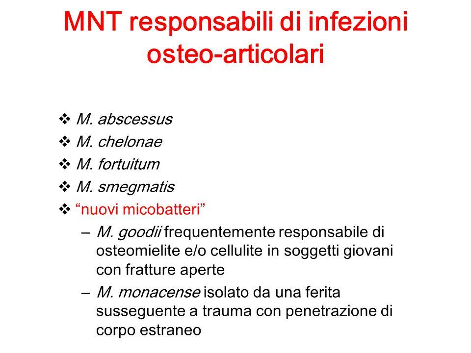 MNT responsabili di infezioni osteo-articolari