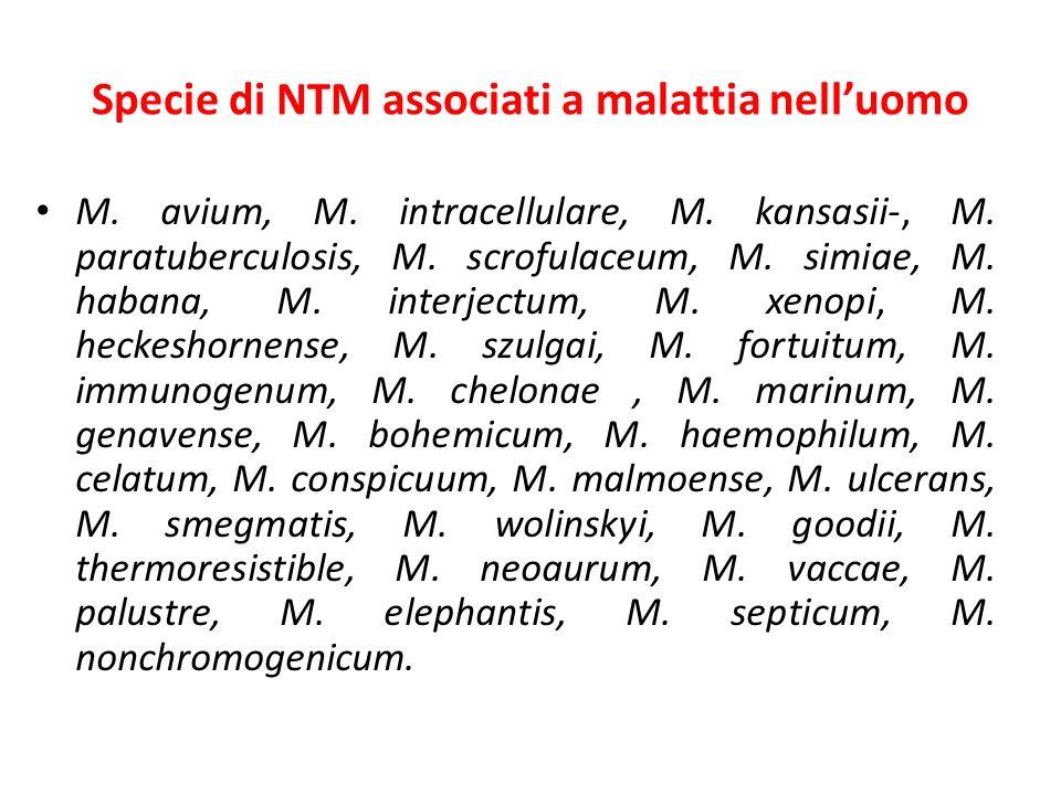 Specie di NTM associati a malattia nell'uomo