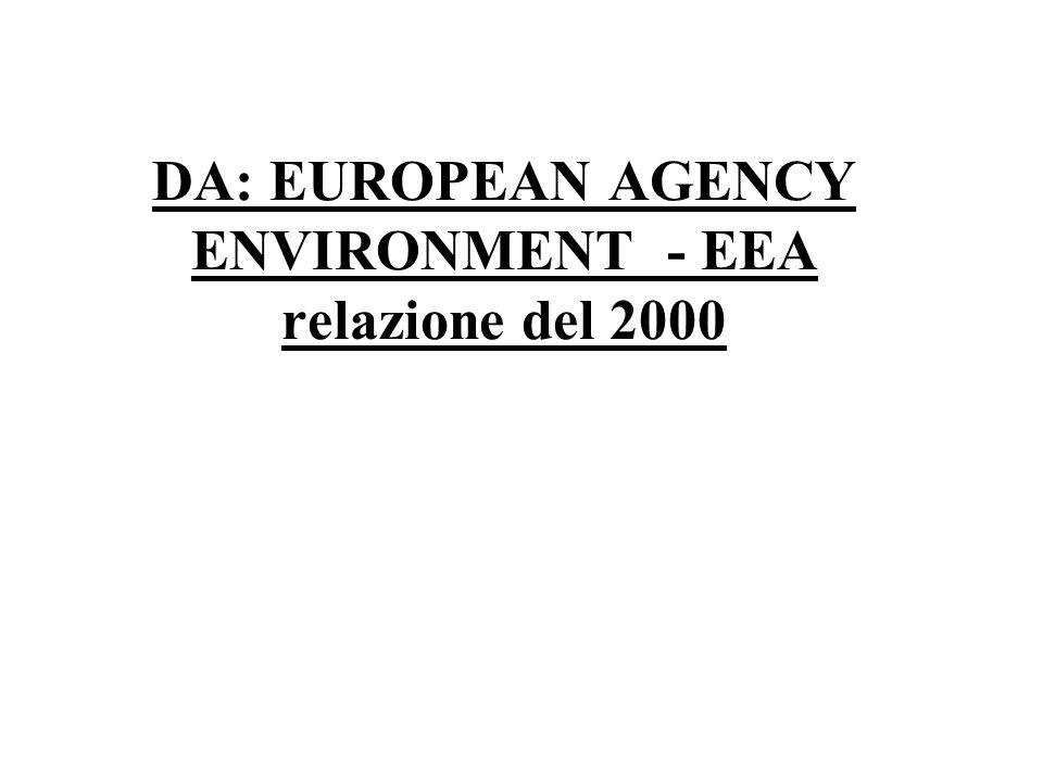 DA: EUROPEAN AGENCY ENVIRONMENT - EEA relazione del 2000