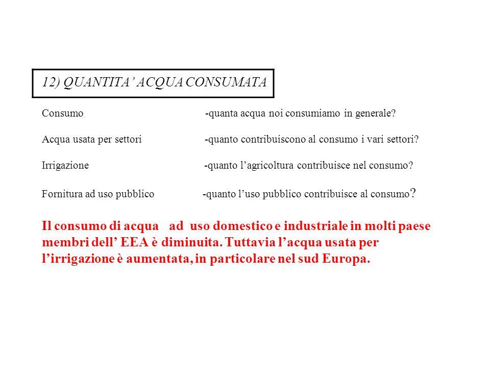 12) QUANTITA' ACQUA CONSUMATA Consumo