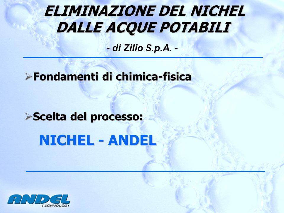 ELIMINAZIONE DEL NICHEL DALLE ACQUE POTABILI - di Zilio S.p.A. -