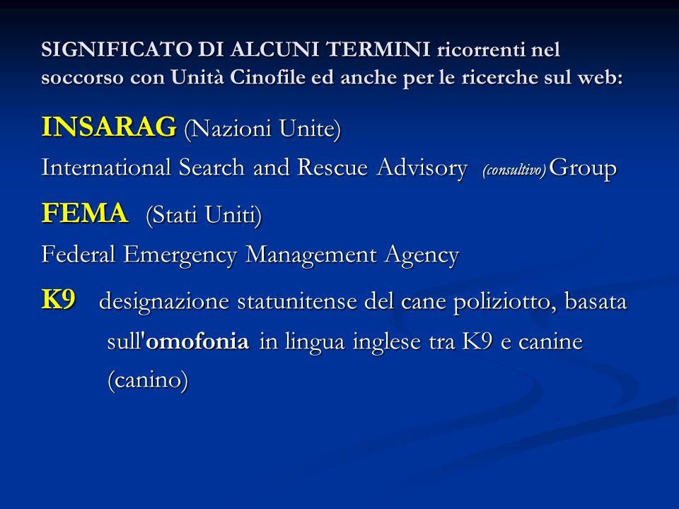 INSARAG (Nazioni Unite) FEMA (Stati Uniti)