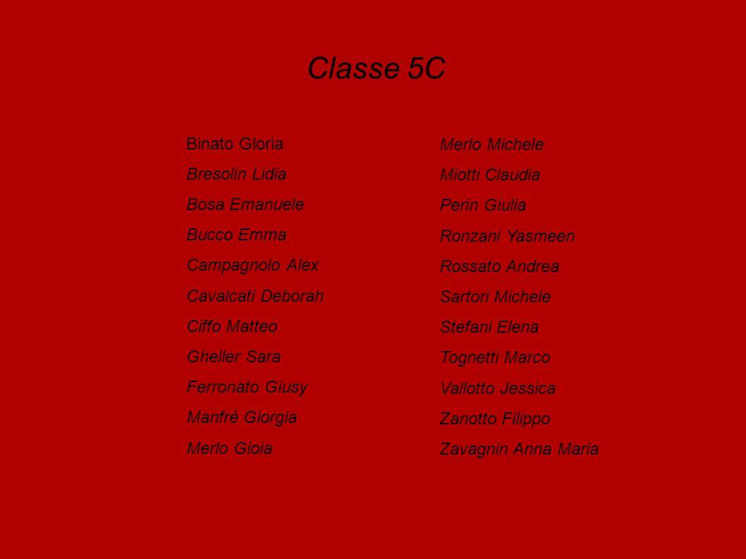 Classe 5C Binato Gloria Merlo Michele Bresolin Lidia Miotti Claudia