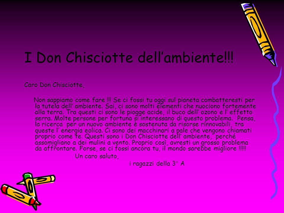 I Don Chisciotte dell'ambiente!!!