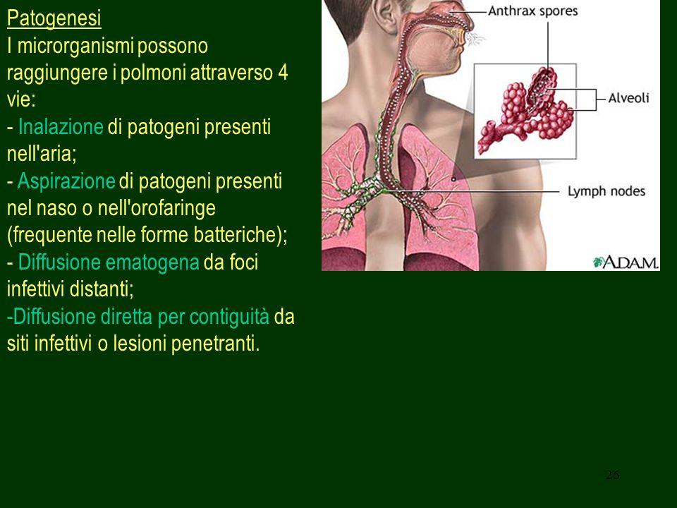 Patogenesi I microrganismi possono raggiungere i polmoni attraverso 4 vie: - Inalazione di patogeni presenti nell aria;