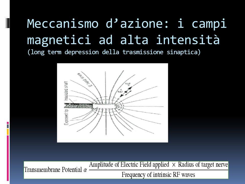 Meccanismo d'azione: i campi magnetici ad alta intensità (long term depression della trasmissione sinaptica)