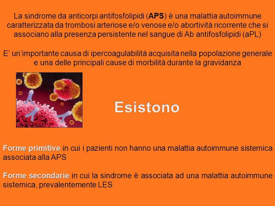 La sindrome da anticorpi antifosfolipidi (APS) è una malattia autoimmune caratterizzata da trombosi arteriose e/o venose e/o abortività ricorrente che si associano alla presenza persistente nel sangue di Ab antifosfolipidi (aPL)