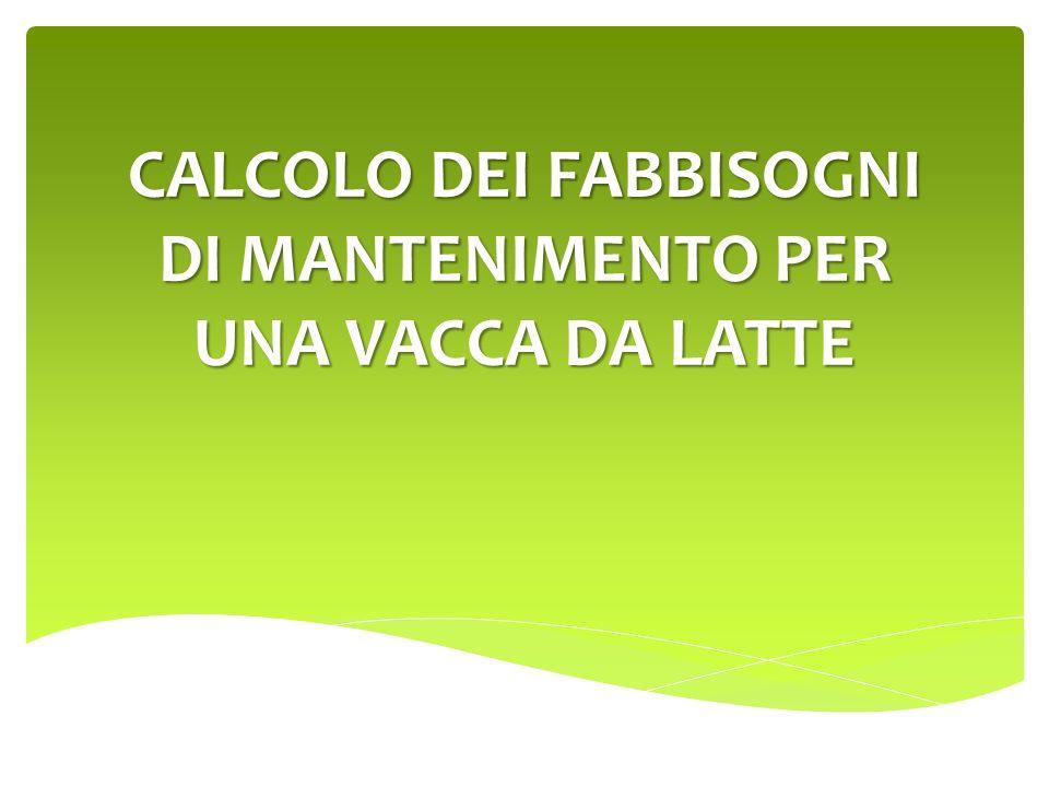 CALCOLO DEI FABBISOGNI DI MANTENIMENTO PER UNA VACCA DA LATTE