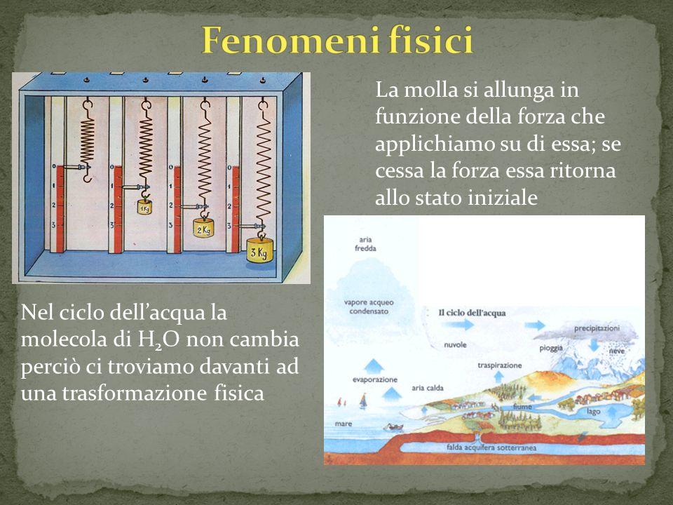 Fenomeni fisici La molla si allunga in funzione della forza che applichiamo su di essa; se cessa la forza essa ritorna allo stato iniziale.