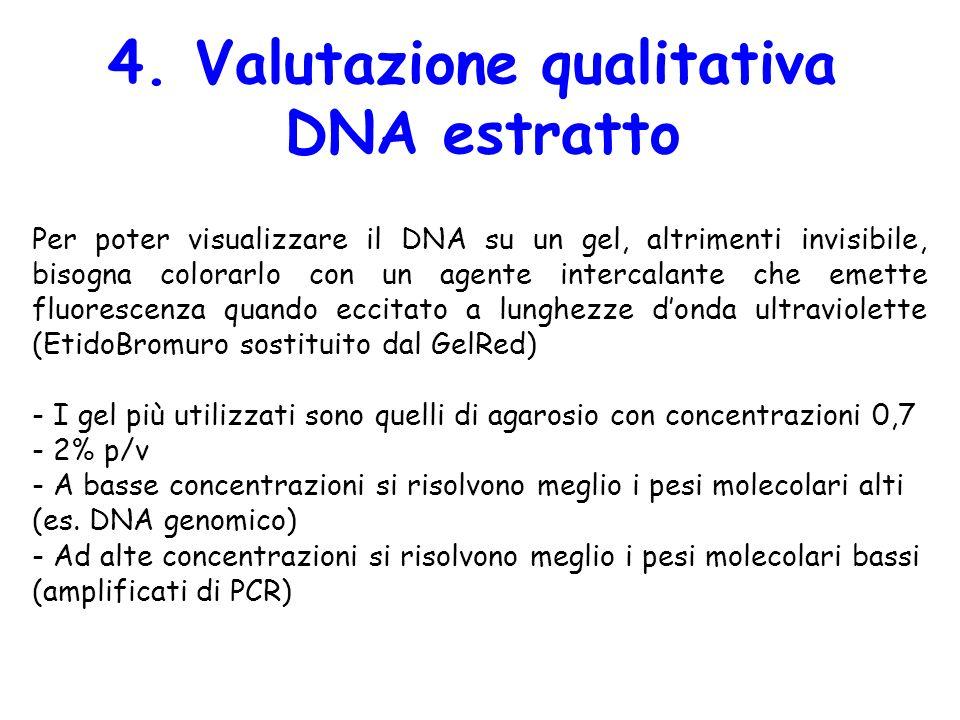 4. Valutazione qualitativa
