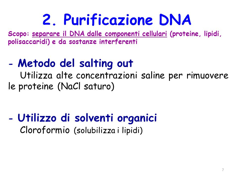 2. Purificazione DNA - Metodo del salting out