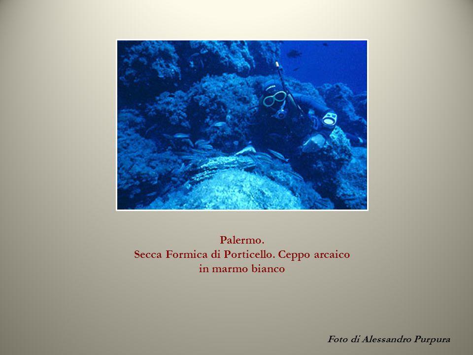 Palermo. Secca Formica di Porticello. Ceppo arcaico in marmo bianco