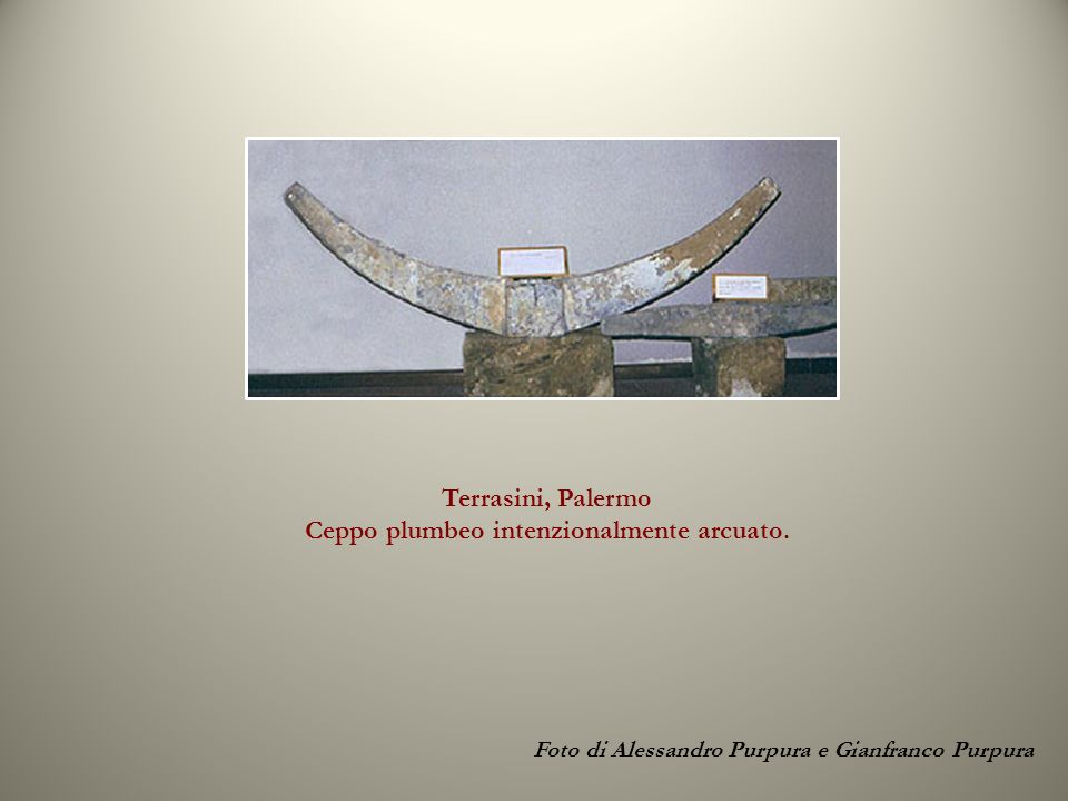 Terrasini, Palermo Ceppo plumbeo intenzionalmente arcuato.