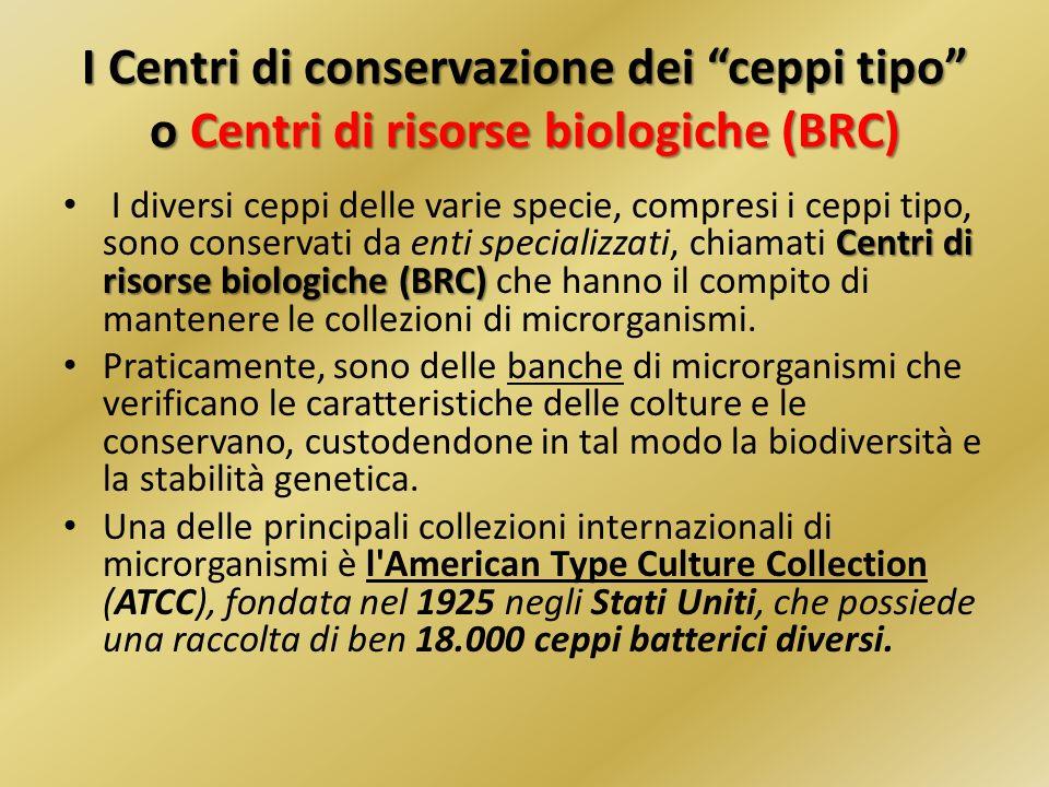 I Centri di conservazione dei ceppi tipo o Centri di risorse biologiche (BRC)