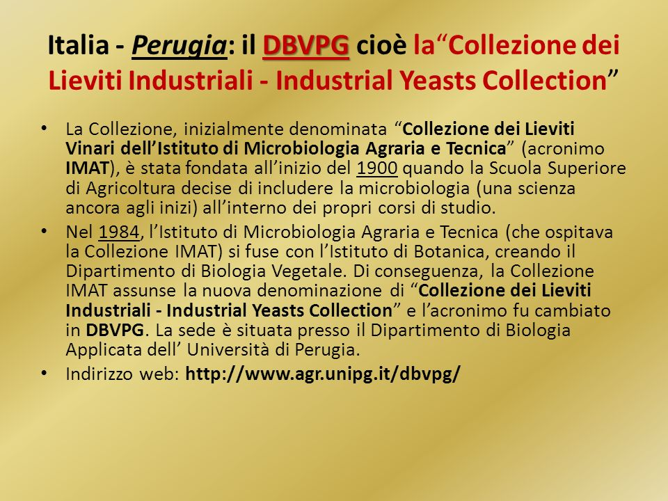Italia - Perugia: il DBVPG cioè la Collezione dei Lieviti Industriali - Industrial Yeasts Collection