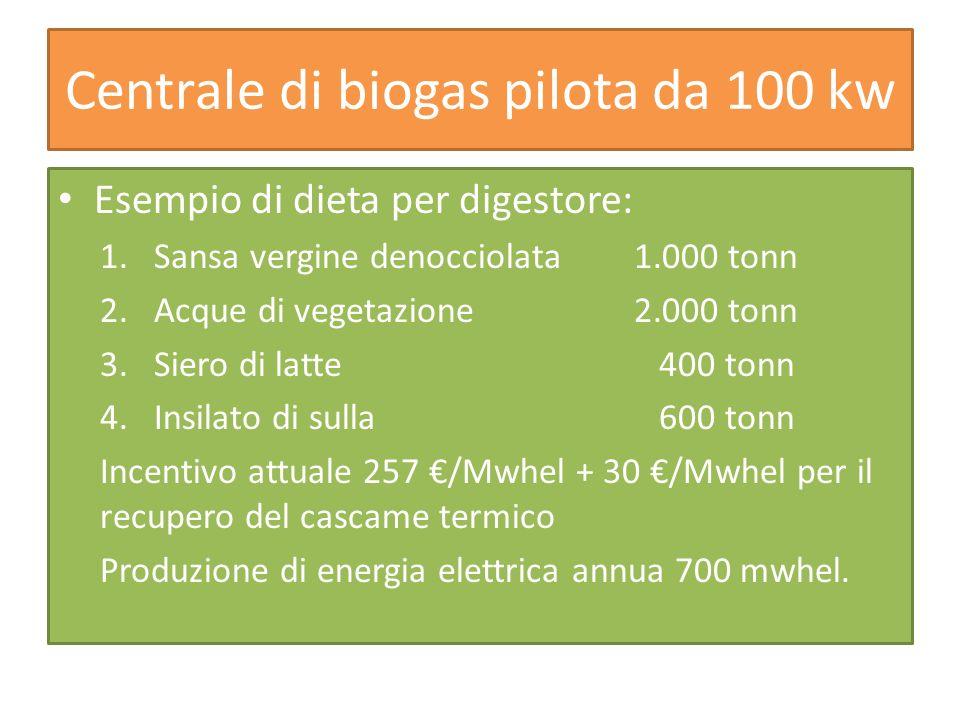 Centrale di biogas pilota da 100 kw