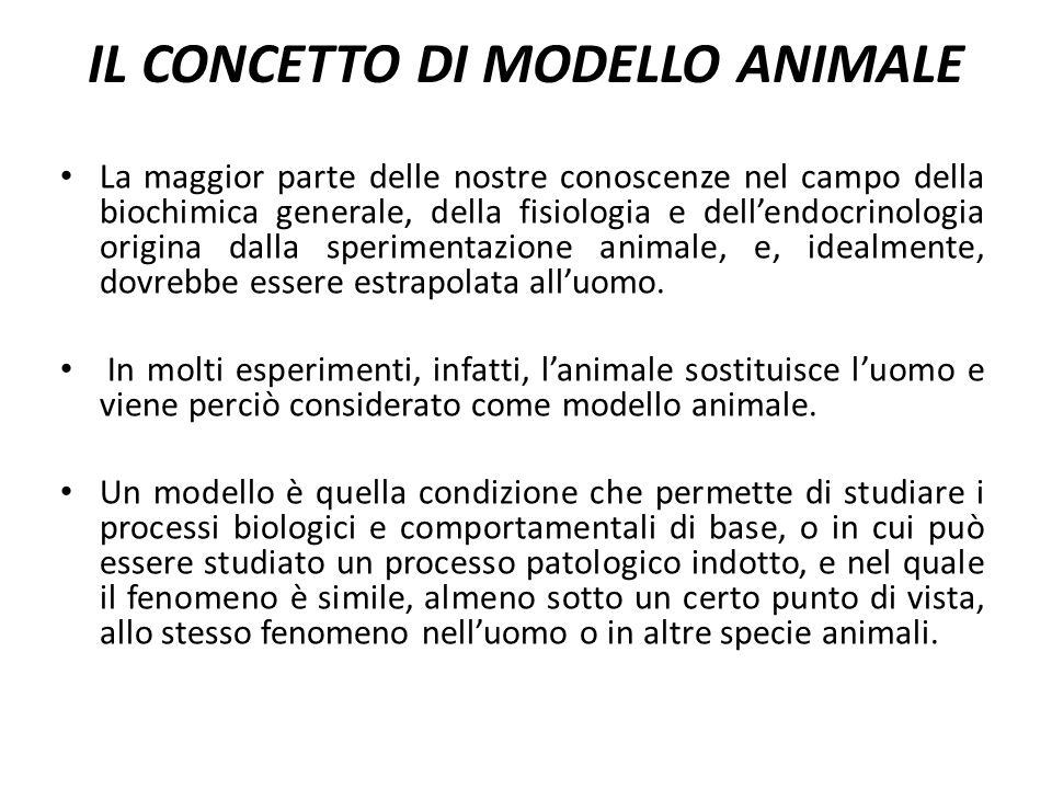 IL CONCETTO DI MODELLO ANIMALE