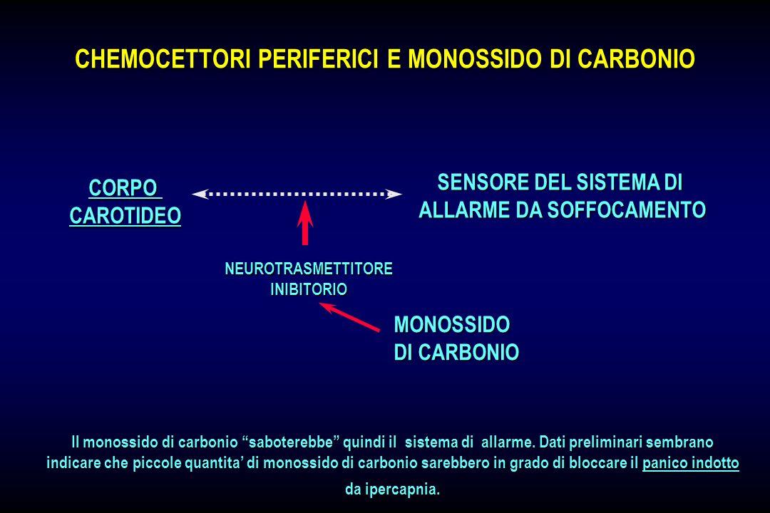 Ansia panico fobie aspetti psicopatologici e for Intossicazione da monossido di carbonio