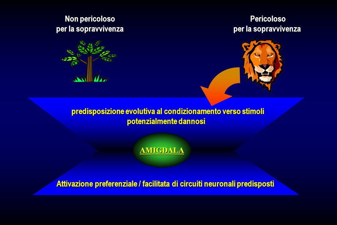 predisposizione evolutiva al condizionamento verso stimoli