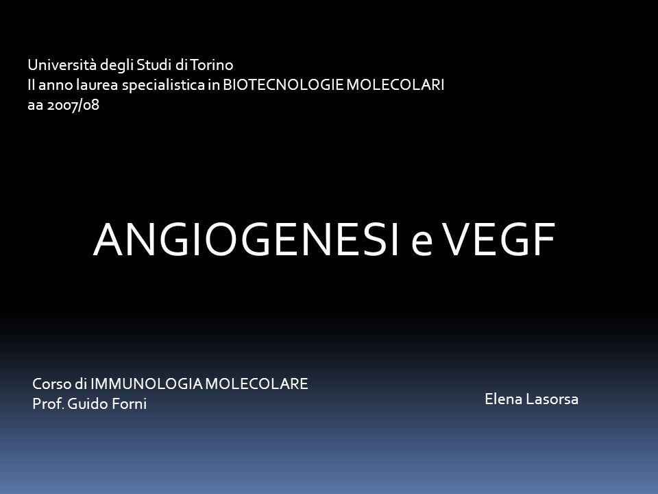 ANGIOGENESI e VEGF Università degli Studi di Torino