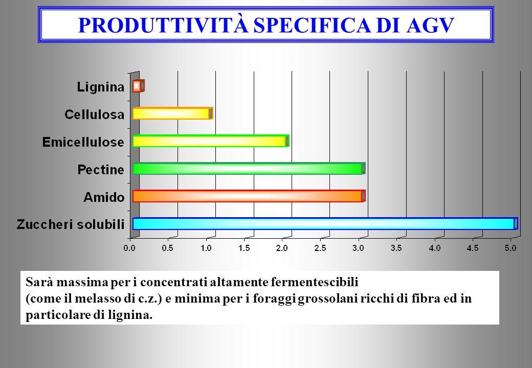 PRODUTTIVITÀ SPECIFICA DI AGV