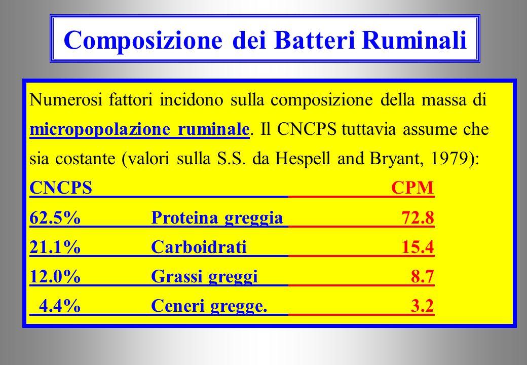 Composizione dei Batteri Ruminali