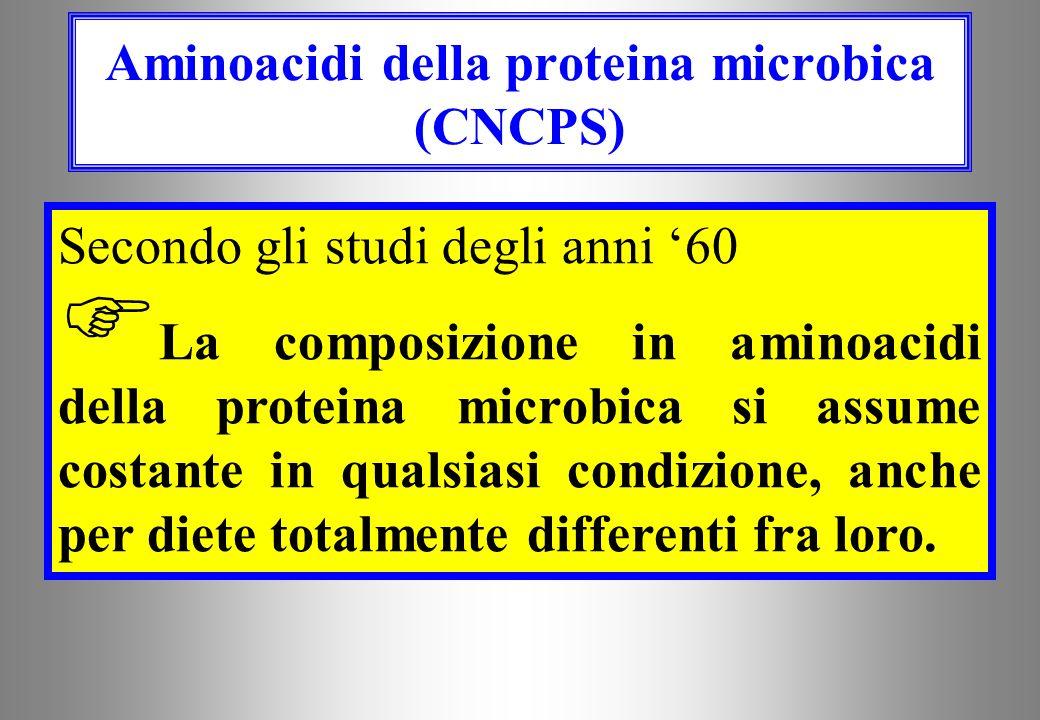 Aminoacidi della proteina microbica (CNCPS)