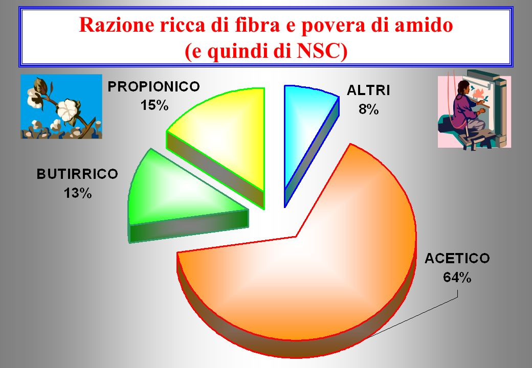 Razione ricca di fibra e povera di amido (e quindi di NSC)