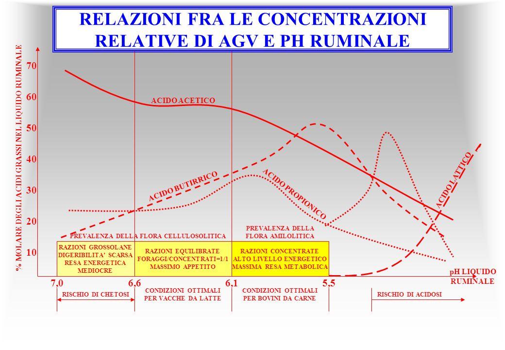 RELAZIONI FRA LE CONCENTRAZIONI RELATIVE DI AGV E PH RUMINALE