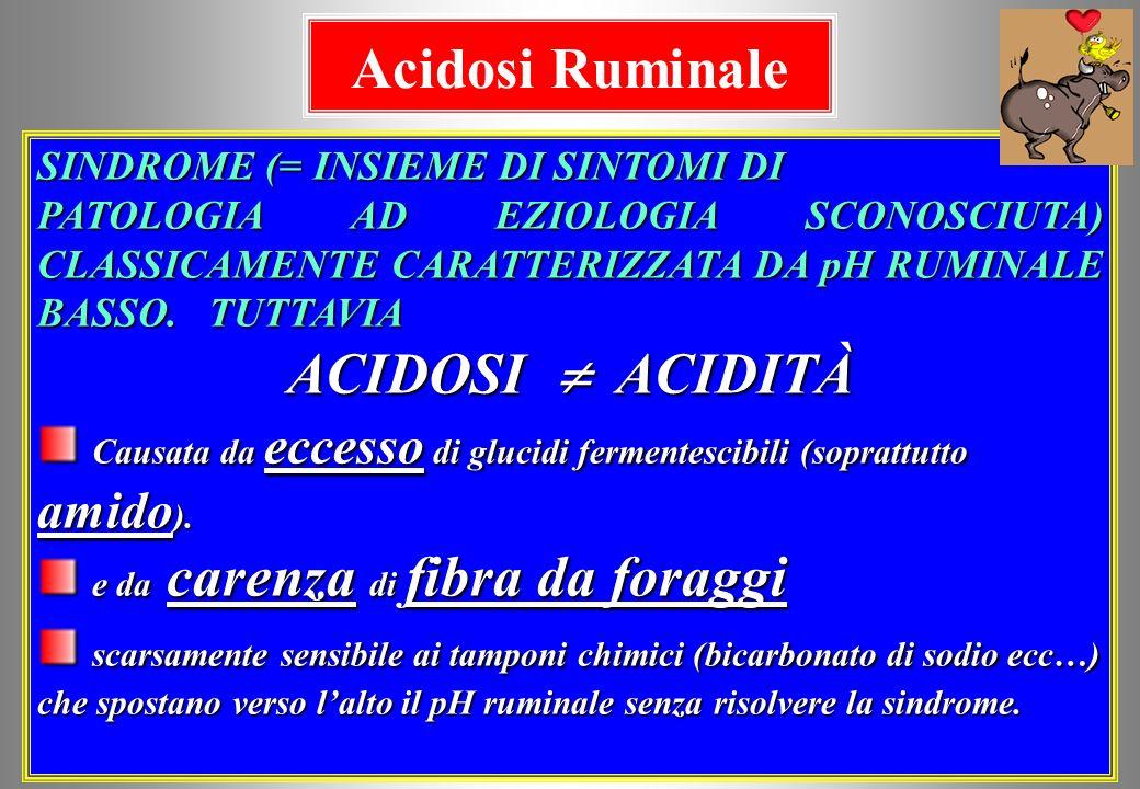 Acidosi Ruminale ACIDOSI  ACIDITÀ