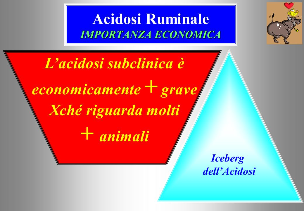 Acidosi Ruminale IMPORTANZA ECONOMICA