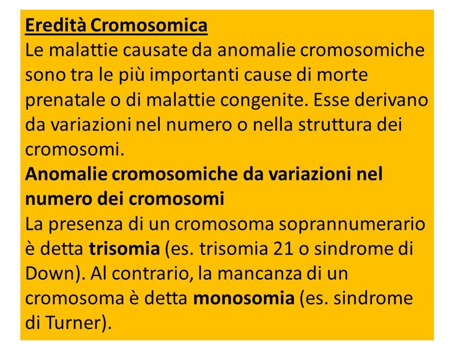 Eredità Cromosomica