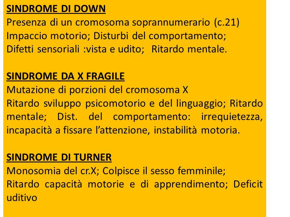 SINDROME DI DOWN Presenza di un cromosoma soprannumerario (c.21) Impaccio motorio; Disturbi del comportamento;