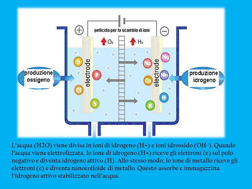 L'acqua (H2O) viene divisa in ioni di idrogeno (H+) e ioni idrossido (OH-).