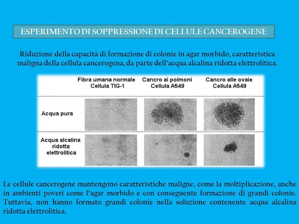 ESPERIMENTO DI SOPPRESSIONE DI CELLULE CANCEROGENE