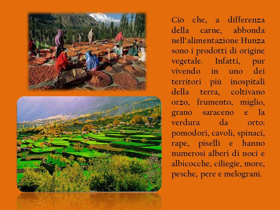 Ciò che, a differenza della carne, abbonda nell'alimentazione Hunza sono i prodotti di origine vegetale.
