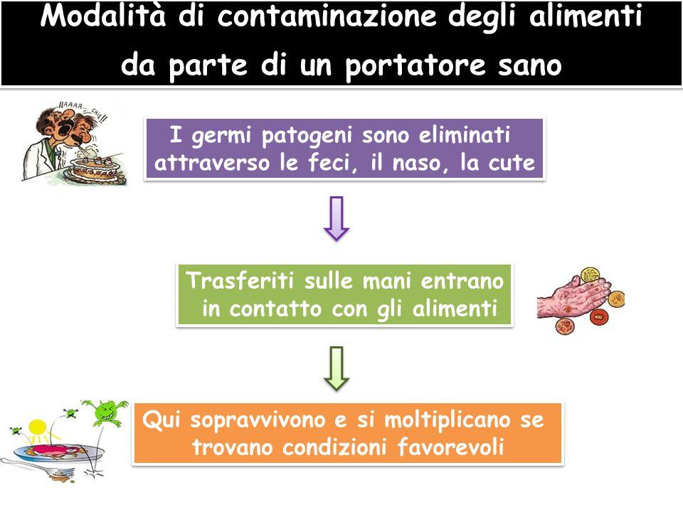 Modalità di contaminazione degli alimenti