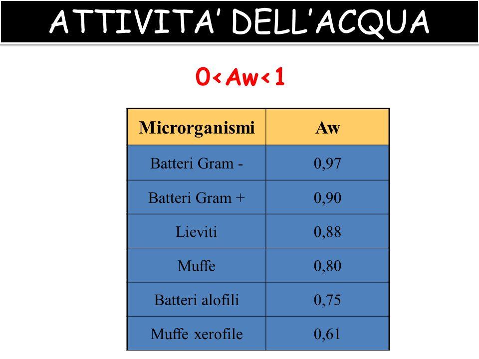ATTIVITA' DELL'ACQUA 0<Aw<1 Microrganismi Aw Batteri Gram - 0,97